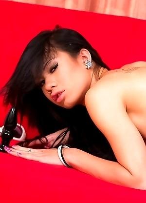 Ladyboy News upskirt shows her big cock and gaping ass in panties