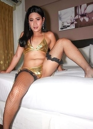 Nim is always ready to fuck and suck. She models for me in her gold bikini and black stockings, showing off her big ass and little hormone titties.