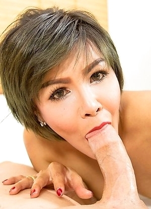 Ladyboy Nice bareback anal sex