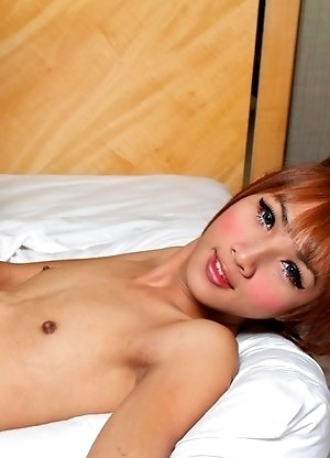 Big and Exotic Ladyboys Fucking!