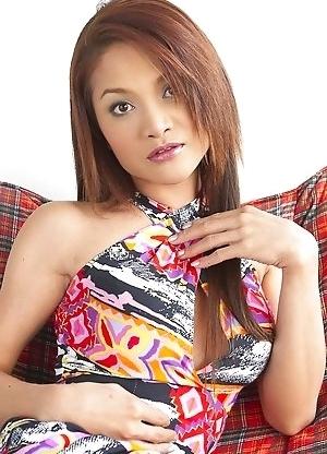 Beauty Asian Shemale Lekila